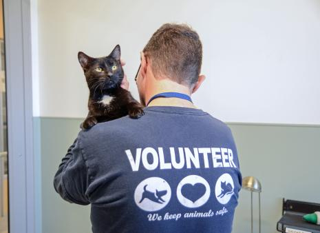 Volunteer holding black cat