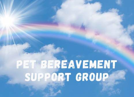 Pet Bereavement Group